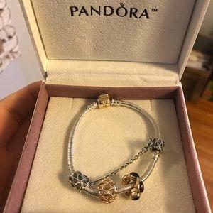 14k gold/sterling silver two-tone Pandora bracelet
